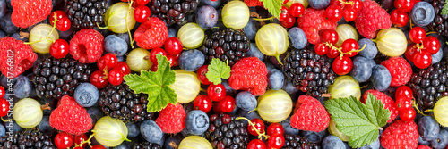 Canvas Berries fruits berry fruit strawberries strawberry blueberries blueberry panoram