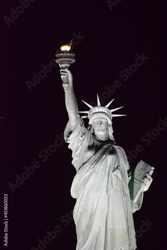 Wallpaper Mural statue of liberty close up in the night with black background