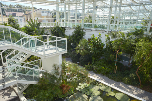 Obraz na plátně Greenhouse in the botanic garden of Padova