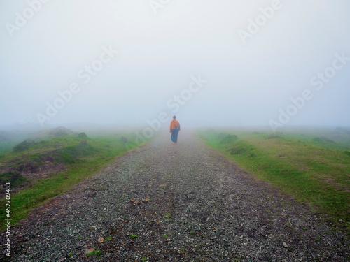 Billede på lærred Chica joven andandoentre la niebla por un camino rupestre de los monte gallegos