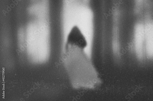 Fotografiet A ghostly transparent woman in a dress standing in a forest