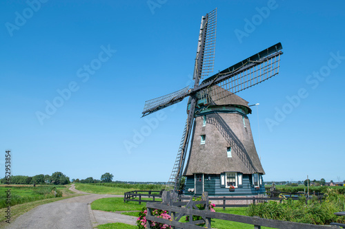 Fotografiet Windmill in a typical Dutch landscape, against a blue Summer sky