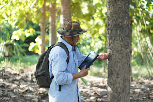 Fotografia Asian male backpack hiker travel alone in forest , survey and collect information of botanical plants by using smart tablet