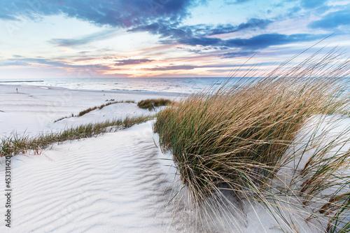 Billede på lærred Beach grass on dune, Baltic sea at sunset
