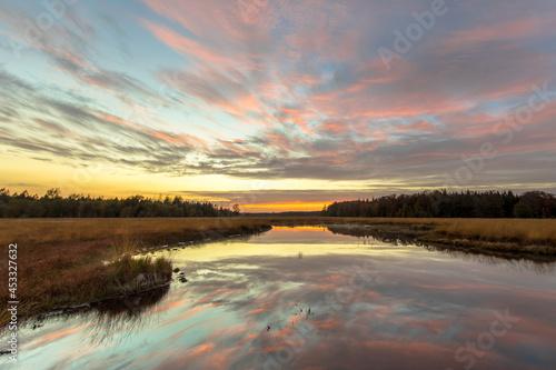 Fotografie, Obraz Fen in heathland nature reserve cut