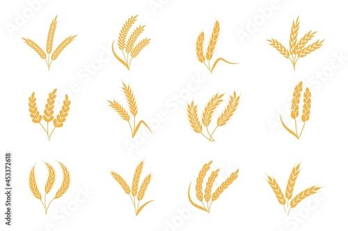 Canvastavla Wheat and rye ears
