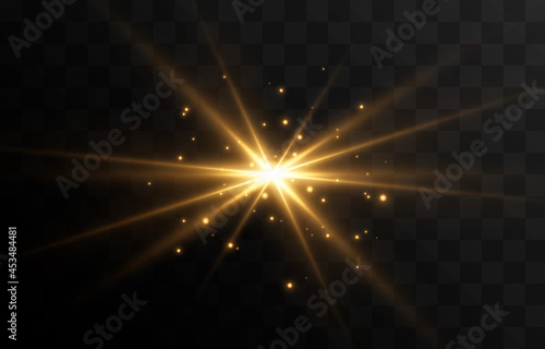 Fotografia Golden light