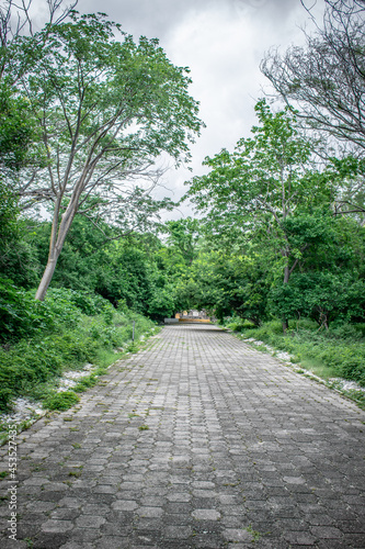 Billede på lærred Entrada al Parque