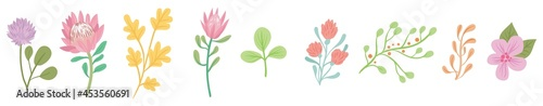 illustration of a flower #453560691