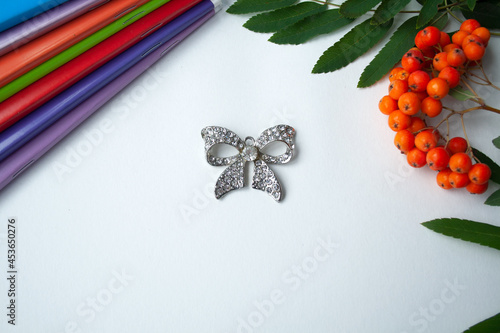 Foto Rowan and notebook with a bow brooch