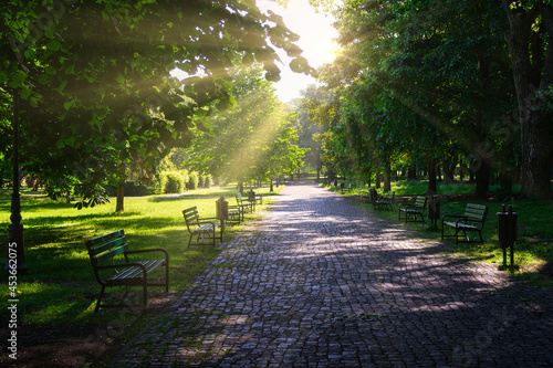 Fotografia Park benches illuminated by the setting sun between trees and their shadows