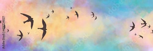 Black bird silhouettes on sunset sky background, birds sketched in black outline Fototapet