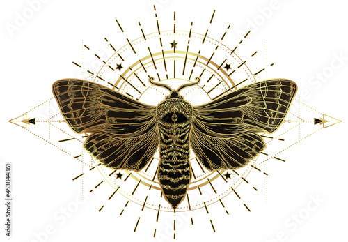 Canvastavla Golden moth over sacred geometry sign, isolated vector illustration