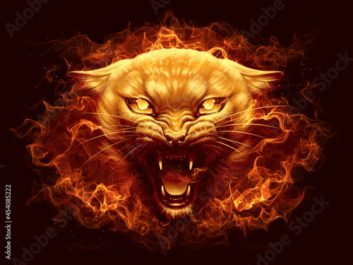 Fotografering Fire cat head with flame digital painting.