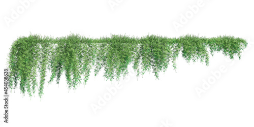 Fotografie, Obraz Climbing plants creepers isolated on white background 3d illustration