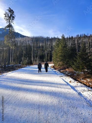 Fototapeta premium hiking in the mountains