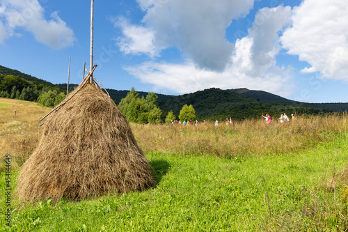 Fotografiet haystack on the grassy meadow in the Carpathian mountains in Ukraine in summer with a greenery and cloudy sky on the background