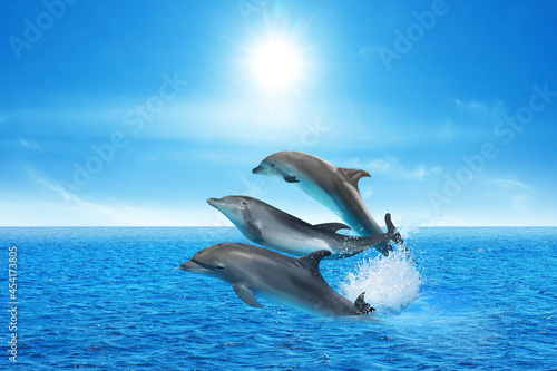 Tableau sur Toile Beautiful bottlenose dolphins jumping out of sea with clear blue water on sunny