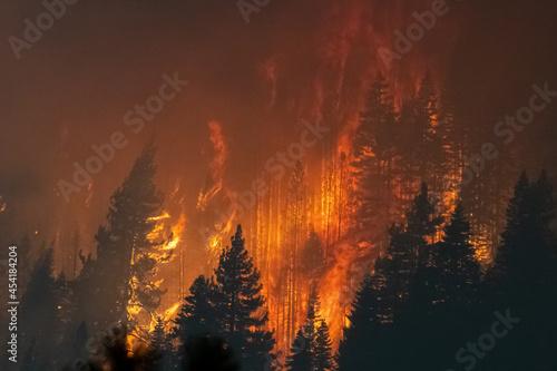 Fotografia Flames approaching Highway 50 during Caldor Fire in California