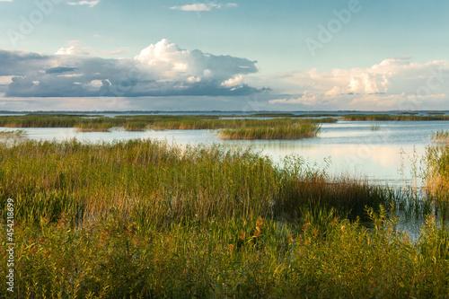 Fototapeta Lubana wetland, nature reserve, Latvia