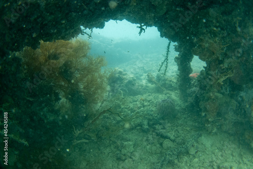 フィリピン、パラワン州のブスアンガ島コロン島に沈没している日本の沈没船をダイビングで撮影した写真 Photo taken by diving of a Japanese sunken ship sinking on Coron Island, Busuanga, Palawan, Philippines Fotobehang