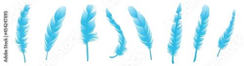 Canvastavla feather icons set. set of feathers. blue feathers.