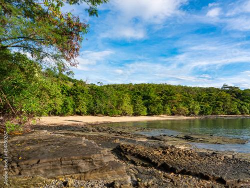 Fotografia, Obraz beautiful landscape of the ecosystem at the seacoast