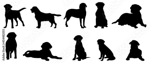 Foto Vector silhouette of a dog on a white background.