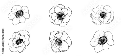 Cuadros en Lienzo Vector beautiful monochrome anemone flowers, elements isolated on white background