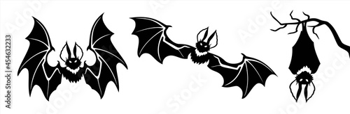 Fotografering Black silhouettes of bats set on white background