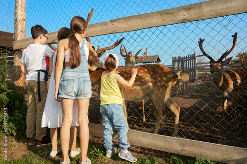 Fotomural A group of children is standing near an aviary with deer