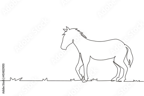 Fototapeta Continuous one line drawing proud white horse walks gracefully with strong character