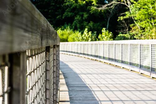 Fotografie, Obraz Bridge in a nature reserve