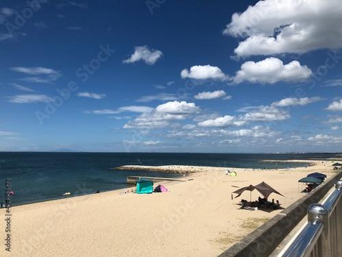 Fototapeta 夏の海