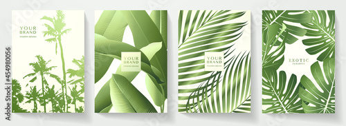 Tropical cover design set with green leaves, palm tree pattern. Exotic floral vector background for brochure, menu summer sale template, eco poster
