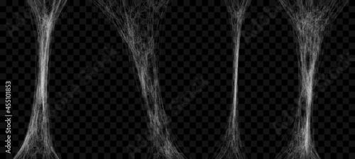 Fotografie, Obraz Realistic stretched spider web set