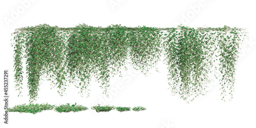 Climbing plants creepers isolated on white background 3d illustration Fototapete