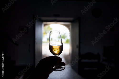 Fotografie, Obraz a glass of sherry wine in hand