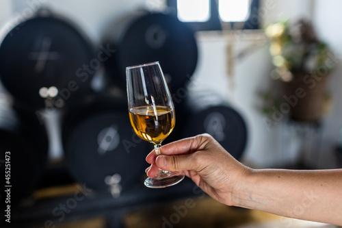Obraz na plátně a glass of sherry wine in hand
