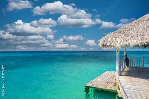 Fotografie, Obraz Water villas in the ocean