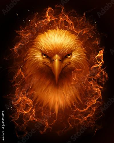 Canvas Print Burning bald eagle head on the dark background