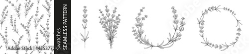 Foto Set of different branches of lavender flowers, pattern and circle frame on white background