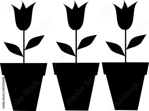 Fotografia Vector silhouette of potted plants on white background
