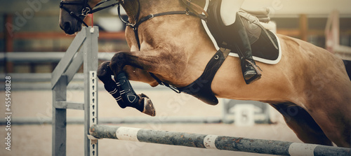 Obraz na plátně The shod hooves of a horse over an obstacle