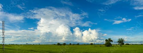 Obraz na plátně Panorama blue Sky clouds over Rice fields before the rain.