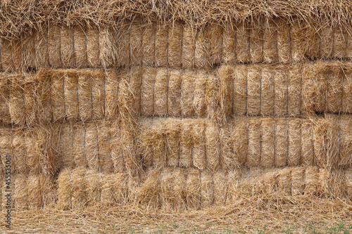Natural golden background with straw in haystack Fototapet