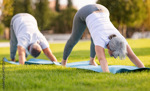 Slika na platnu Elderly couple senior husband and wife practicing yoga outside standing in downw