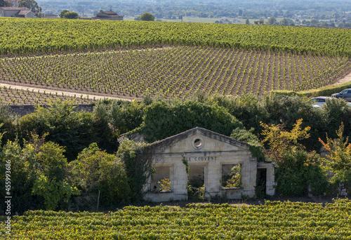 Fotografering Famous French Vineyards at Saint Emilion town near Bordeaux, France
