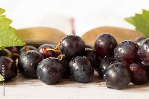 Foto Closeup of fresh purple grapes with open Holy golden Bible