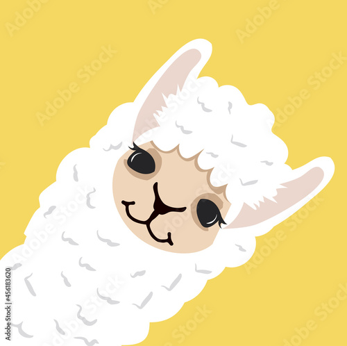Fototapeta premium Cute lama alpaca head on yellow background
